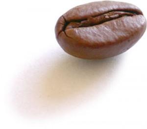 Koffie drinken in Nieuw Zeeland